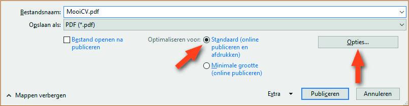 Voorbeeld PDF genereren cv