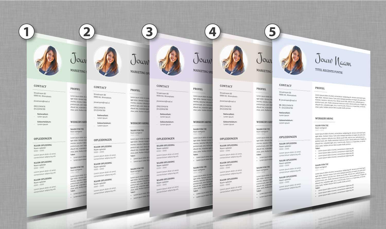 Alle-kleurtinten-cv-template-11