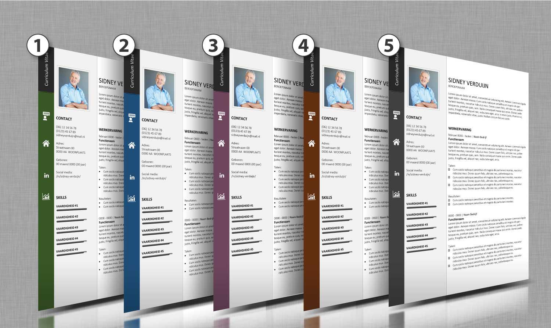 Alle-kleurtinten-cv-template-13