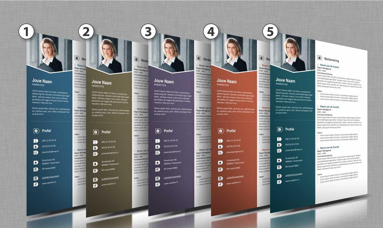 Alle-kleurtinten-cv-template-27