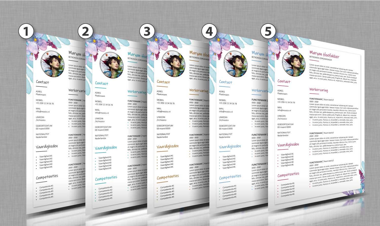 Alle-kleurtinten-cv-template-46