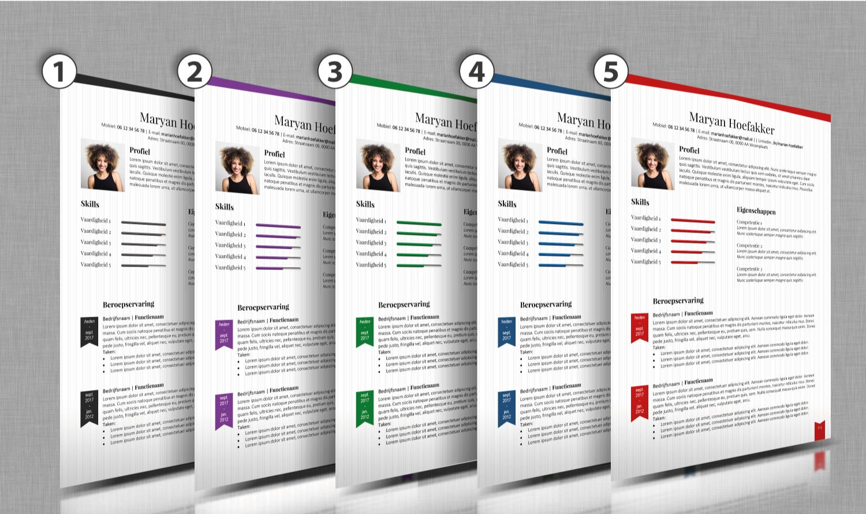Kies je kleur cv voorbeeld 50-2