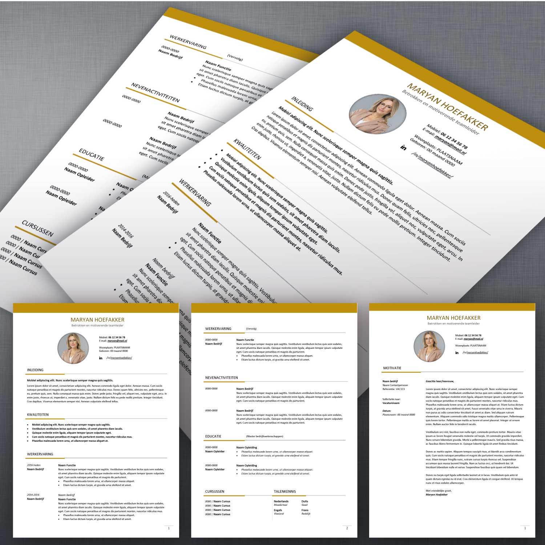 Voorbeeld CV en sollicitatiebrief 55