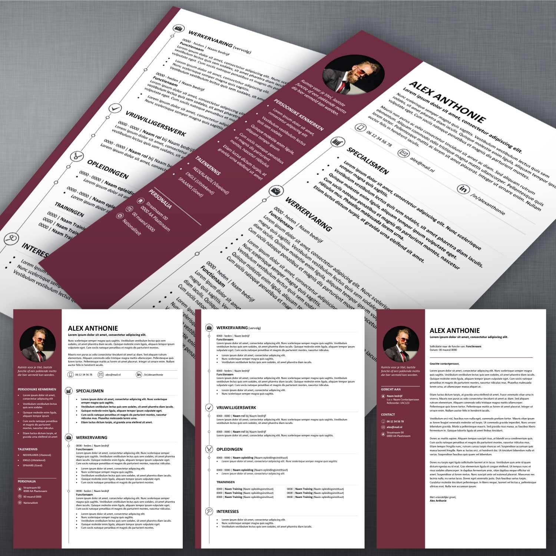 CV voorbeeld en sollicitatiebrief 56